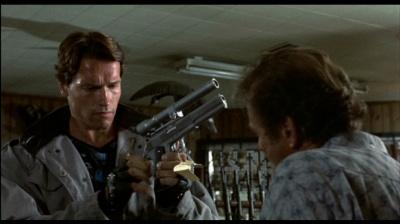 The Terminator image