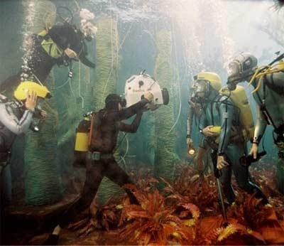 The Life Aquatic image